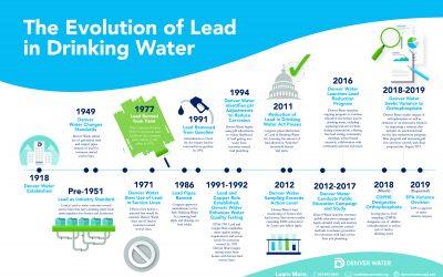 Our Lead Problem – Part 2
